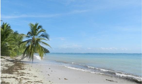 Playa paradisíaca del Caribe de Costa Rica